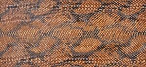 mah Assortment Vinyl Snake 732X2779_mah